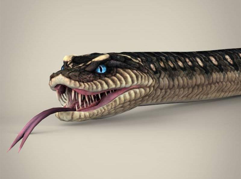 Incredeble snake Raktdri (रक्तध्री)